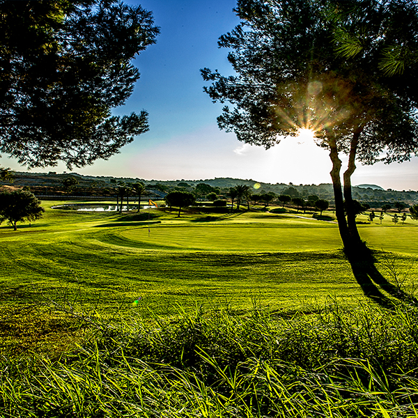 Frontline golf plots in Alenda Golf Resort – design your dream golf home !