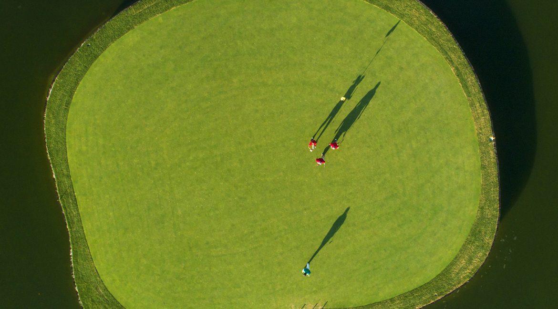 Lo Romero Golf 16