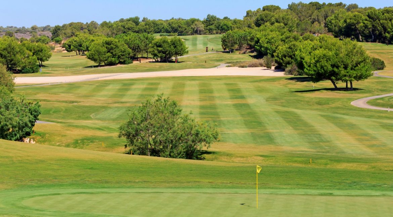 Lo Romero Golf 24