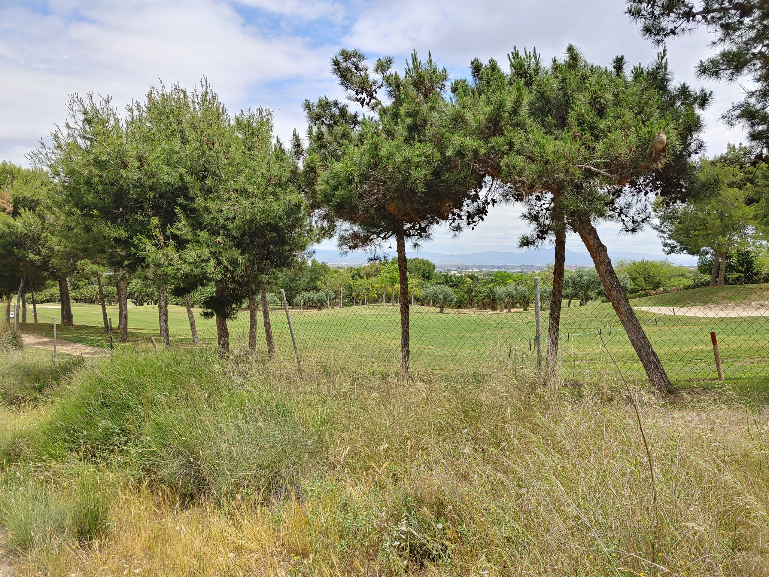300000 m2 of land for sale adjacent to the 1st and 2nd holes of El Plantio Golf Course Alicante
